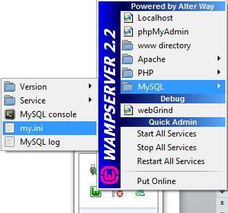 Error 2006 (hy000) mysql server has gone away xampp